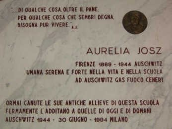 Aurelia targa