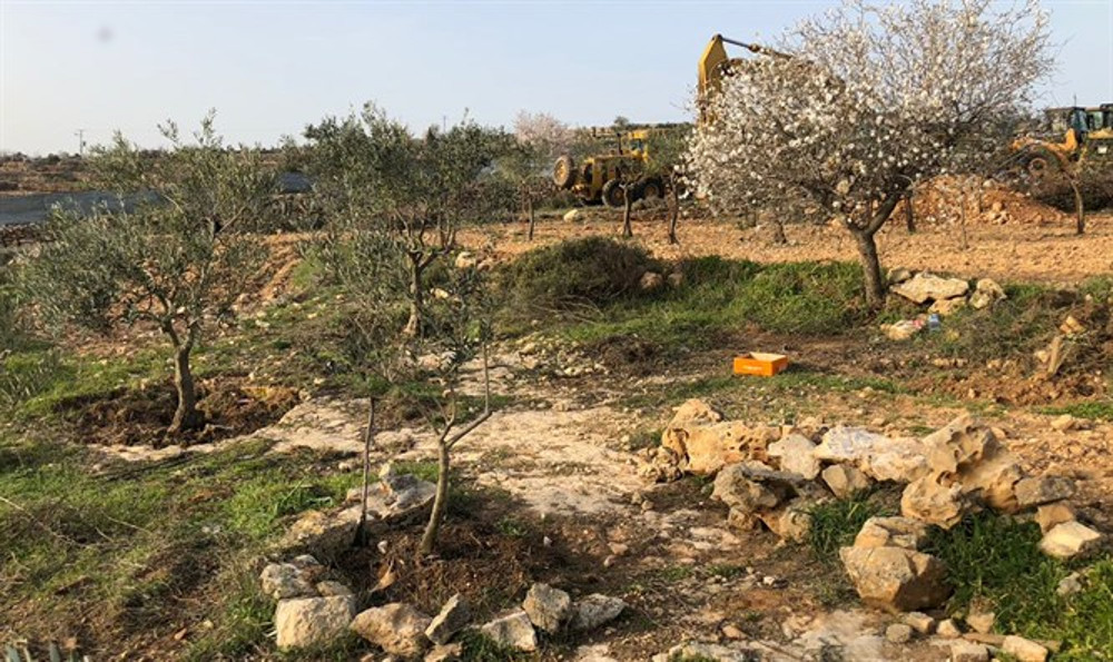 netiv Ha'avot dove bulldozer israeliani hanno danneggiato delle tombe dell'età dei Patriarchi