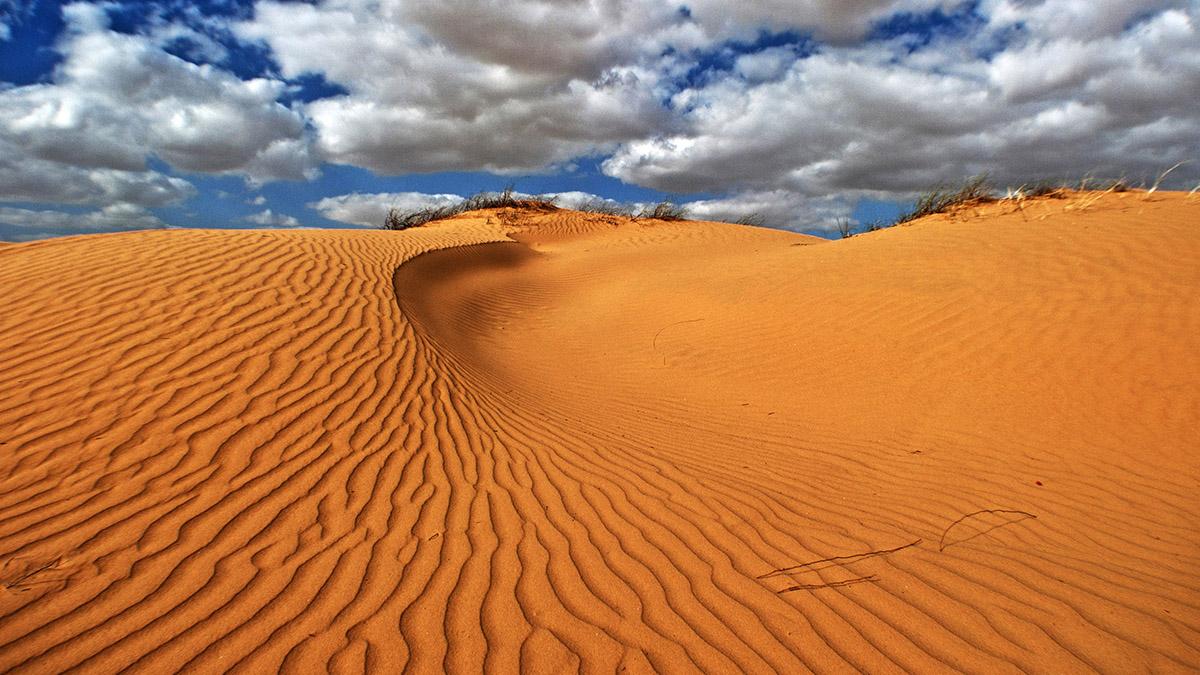 Il deserto, protagonista della Parashat Bamdibar