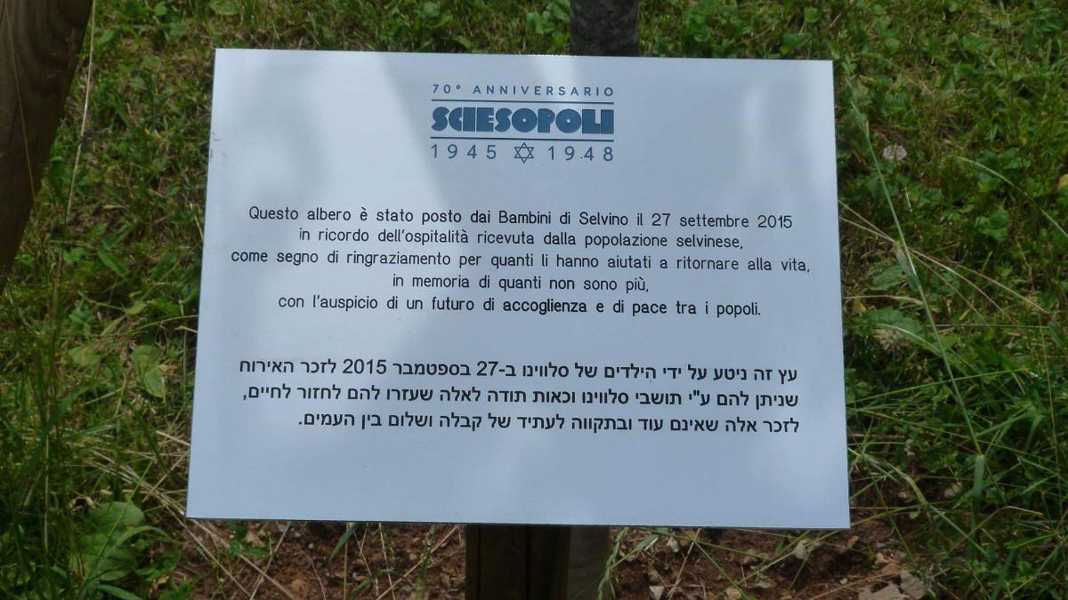 La targa rubata alla colonia di Sciesopoli a Selvino