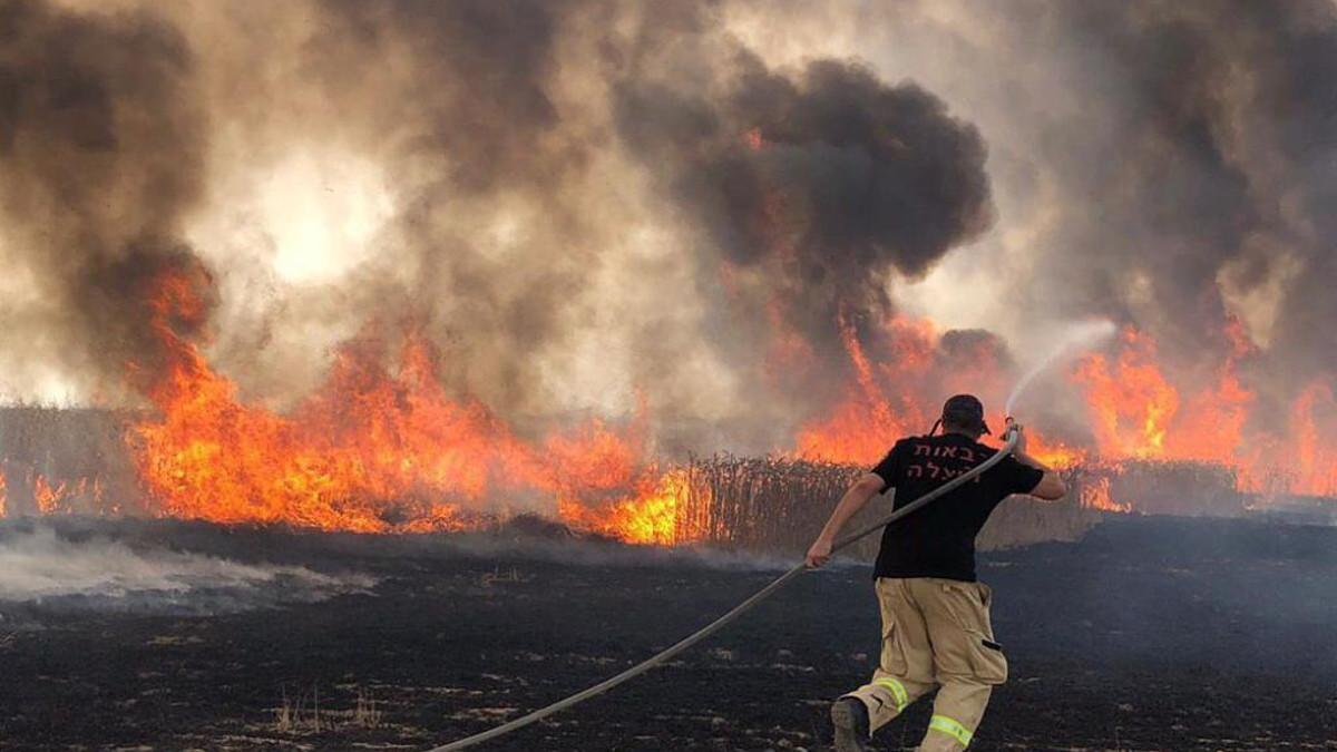 I pompieri lottano con gli incendi in Israele