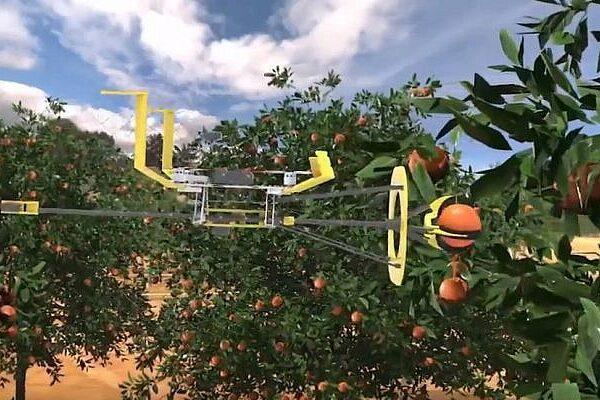 Il robto che raccolgie la frutta sviluppato dalla startup Tevel