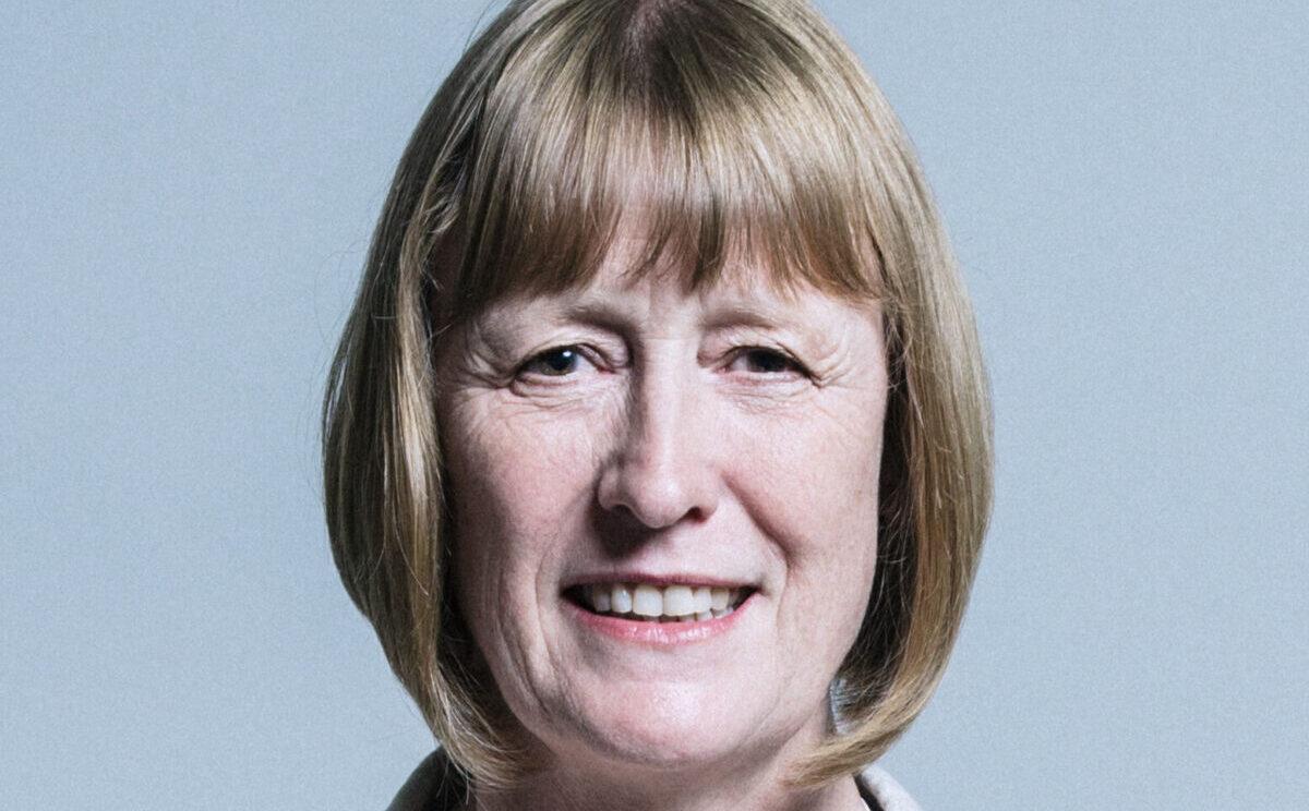 Joan Ryan, ex Labour, nominata ceo ELNET